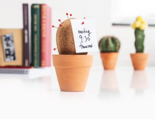 Cork Cactus: desktop organizer
